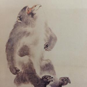 森狙仙の画像 p1_35